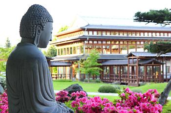 Japanischer Garten Garten Der Glückseeligkeit In Bad Langensalza